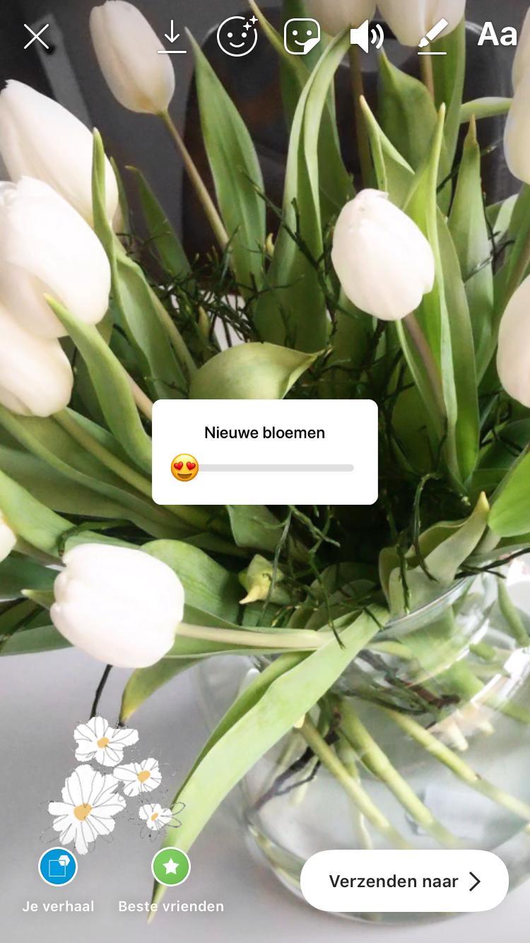 Instagram stories - Nieuwe Stijl - Putten - Instagram - Vormgeving